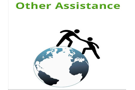 Other-Assistance.jpg